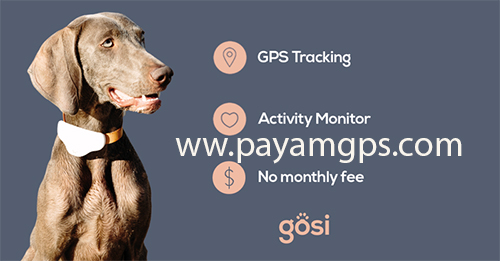 خرید ردیاب Gosi برای ردیابی حیوانات خانگی